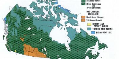 Canada states map - Map of Canada showing states (Northern America ...